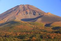水ヶ塚公園より黄葉と富士山