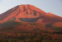 水ヶ塚公園より秋の赤富士