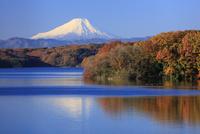 狭山湖より紅葉と富士山を望む