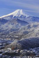 岩殿山より雪景色の富士山を望む