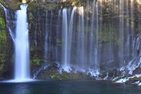 流れ落ちる富士山白糸の滝