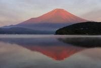 山中湖より夏の逆さ赤富士