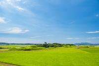 新原・奴山古墳群1 02742000387| 写真素材・ストックフォト・画像・イラスト素材|アマナイメージズ