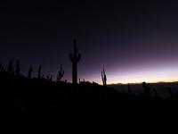 ボリビア 天空の塩湖 ウユ二の眺望 インカワシ サボテンの島 02763000176| 写真素材・ストックフォト・画像・イラスト素材|アマナイメージズ