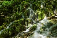 プリトヴィツェ湖群国立公園 連なる滝に射す斜光