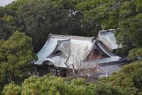 潮岬の潮御崎神社