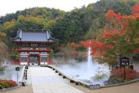 紅葉の勝尾寺 山門