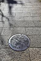 真言坂の石畳と大阪城のマンホール