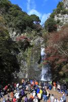 箕面公園 箕面滝と観光客