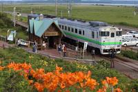 駅 原生花園(臨時駅)とキハ40