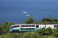 特急 「スーパービュー踊り子」伊豆の海岸線を走る