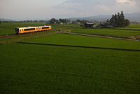 夏の田園風景 米坂線