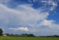 烏山線  夏の空