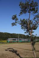 秋の越後路 えちごトキめき鉄道