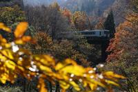 晩秋の山あいを走る米坂線