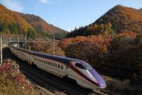 新幹線 「つばさ」E3系峠の紅葉
