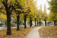 ロワン川沿いの黄葉と小道
