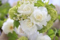 白バラとスズラン