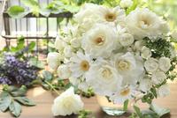 白い花を集めて