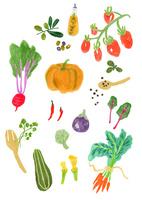 西洋野菜イラスト
