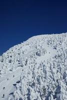 ザンゲ坂・樹氷原コースと樹氷