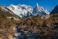 パタゴニアの針峰セロトーレと紅葉