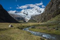ワスカラン国立公園のワンツァン峰と草原のキャンプ地