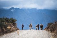 ペルー・ウルバンバ谷の農村の暮らし