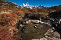 秋のパタゴニア・フィッツロイ峰と紅葉の南極ブナと小川