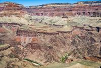 グランドキャニオンの渓谷とコロラド川 02798000478| 写真素材・ストックフォト・画像・イラスト素材|アマナイメージズ