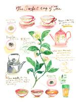 完璧なお茶(紅茶、緑茶)の淹れ方と食材