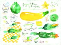 ズッキーニのフライのレシピと食材