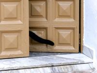 スペインのミハスの街中にいる黒猫の尻尾