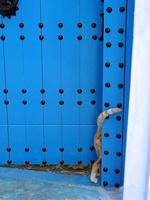 シャウエンの青い街の青い扉の中に入っていく茶トラ猫
