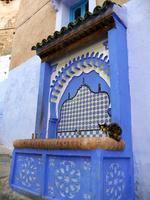 シャウエンの青い街のウドゥ(手洗い場)にいる三毛猫