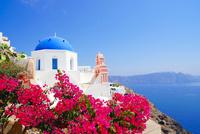 サントリーニ島イアの教会 02821000125| 写真素材・ストックフォト・画像・イラスト素材|アマナイメージズ