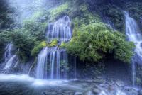 幻想的な吐竜の滝