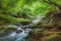 石空川渓谷の清流 02822000013| 写真素材・ストックフォト・画像・イラスト素材|アマナイメージズ