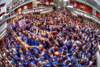 大勢で沸き返る三社祭の神輿 02822000019| 写真素材・ストックフォト・画像・イラスト素材|アマナイメージズ
