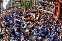 大勢で沸き返る三社祭の神輿 02822000020| 写真素材・ストックフォト・画像・イラスト素材|アマナイメージズ