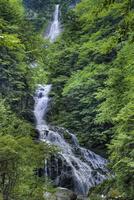 精進ケ滝 02822000068| 写真素材・ストックフォト・画像・イラスト素材|アマナイメージズ