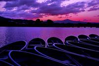嵐山の夜明け 02822000109| 写真素材・ストックフォト・画像・イラスト素材|アマナイメージズ