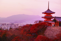 秋の清水寺の夕景
