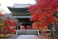 紅葉の南禅寺 02822000191| 写真素材・ストックフォト・画像・イラスト素材|アマナイメージズ