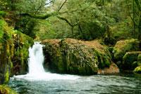 菊池渓谷 黎明の滝
