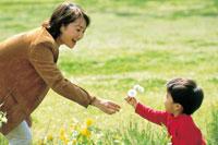 花を摘む親子 07092000221| 写真素材・ストックフォト・画像・イラスト素材|アマナイメージズ