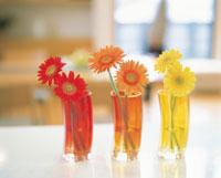 グラスに挿した花