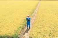 田んぼに立つ男性