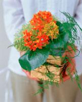 手に持つ花