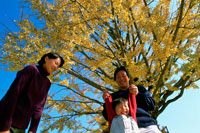 紅葉の木と家族3人